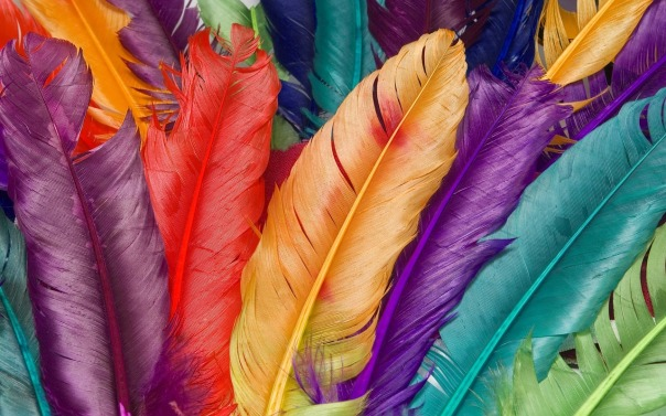 feather-886785_1280