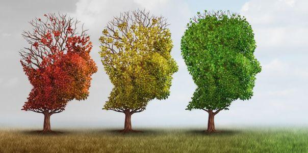 A Transforming Mind